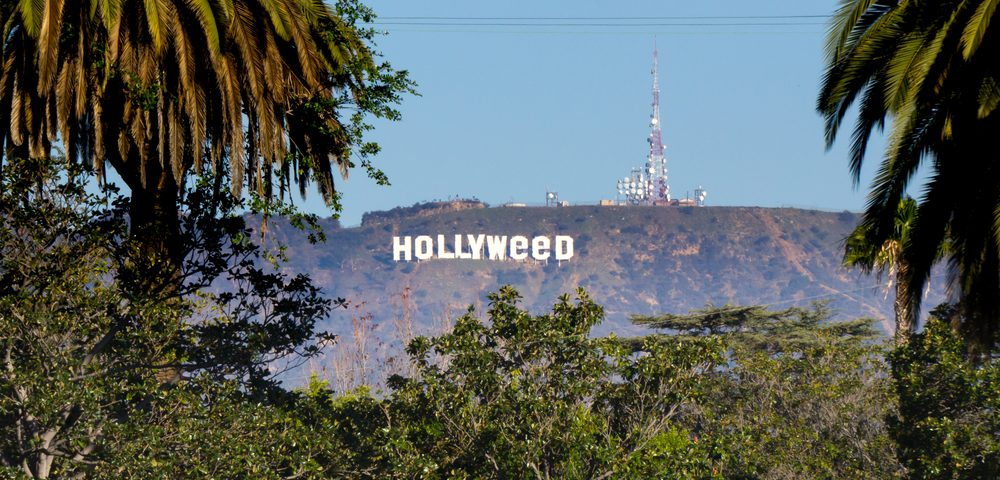 Artist Will Donate Part of Proceeds from Hollyweed T-shirt Sales to Myeloma
