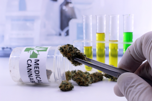 Medicinal Cannabis Safe and Effective for Pain, Chemo Side Effects, Journal Says