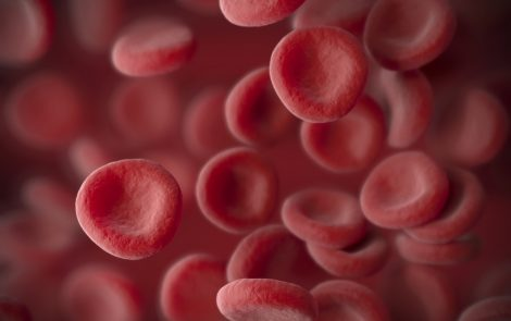 Phase 1 Trial for Investigational Therapy STRO-001 Treats First Myeloma, Lymphoma Patients